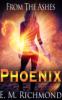 phoenixnz: Novel cover by ctbn60 (Default)