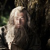 mayqueen517: (Gandalf is the best)
