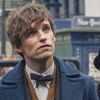 fantasticnewt: (wonder close-up)