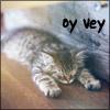 elasait: (oy vey cat)