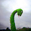 ellyd: loch ness monster topiary. (Default)