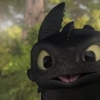 nobleplatypus: (Toothless derp)