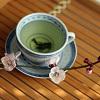 siren_verses: (Tea <3)