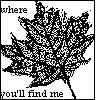 lolaraincoat: (where you'll find me)