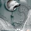 echolalala: a polar bear roaring and poking its head out of a ship (polar)