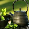 roguequill: (tea)