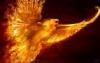 fireandashesagain: (Flying Free (bird form))