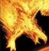 fireandashesagain: (Phoenix Diving (bird form))