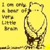 misslucyjane: winnie-ther-pooh (very little brain)