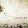 scorched_board: (pic#1187501)