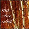 darchildre: birch trees in autumn (yi elischi sa ai chi bedhul)