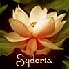 syderia: lotus Syderia (Default)
