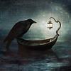 ashlaran: (raven at night)