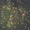 ashlaran: (tree lights)