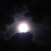 wyld_dandelyon: (full moon)