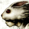noctiluca: (rabbit)