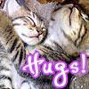 linaelyn: (hugs from kittens)