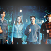 pretty_panther: (hp: the gang)