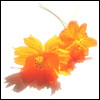 sheron: (04 orange flowers)