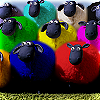 jadesfire: Multicoloured sheep (not real ones, models from stop-motion animation) (Multicoloured sheep)