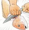 fishguts: A poor fishy is split in two. (fishguts!)