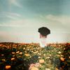 seynee: (like the tattered sky.)