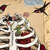 glamjam: (Hummingbird ribcage)