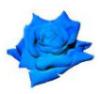 bluerosenz: (pic#1210903)