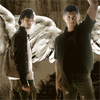 angelnetgirl: (Sam and Dean Angels) (Default)