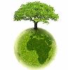 mad_martha: (World Tree)