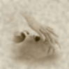 aaaaaaaagh_sky: (yawn, old photo, blurry)