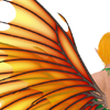 ladyasul: A picture of the back of a fairy, with their red-and-gold wings spread out. (Default)