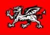 eosin: (wessex dragon)