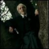 dragonofgrey: (Draco inna tree)