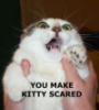 dameruth: You make kitty scared. (Default)