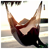 delight: (hammocking)
