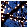 delight: (a tree full of stars)