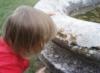 nuala: (lichen)