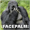 dhae_knight_1: facepalm (facepalm)