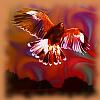 wingsof_fortune: (Wings)