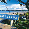 a_gal_icons: (NZ = Aotearoa, NZ; Whitianga)