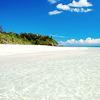 islandbox: (pic#1251209)