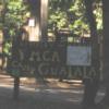 campgualala: (gualalalala)