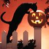 jenna_marianne: (Halloween Cat)