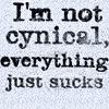 irishredlass: (Cynical)
