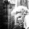 paynesgrey: Looking out at the world below (marilyn)