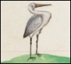 nightdog_barks: A white heron stands, looking to the right (Medieval heron)
