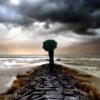 caerwyn: (Rain - Pier)