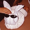 ursamajor: beach towel folded to look like a rabbit (bunnies!)