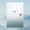 twobirdsonesong: (twobirds default)
